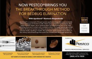 Aprehend bed bug elimination Pestco