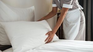 Hotel bed bug prevention programs
