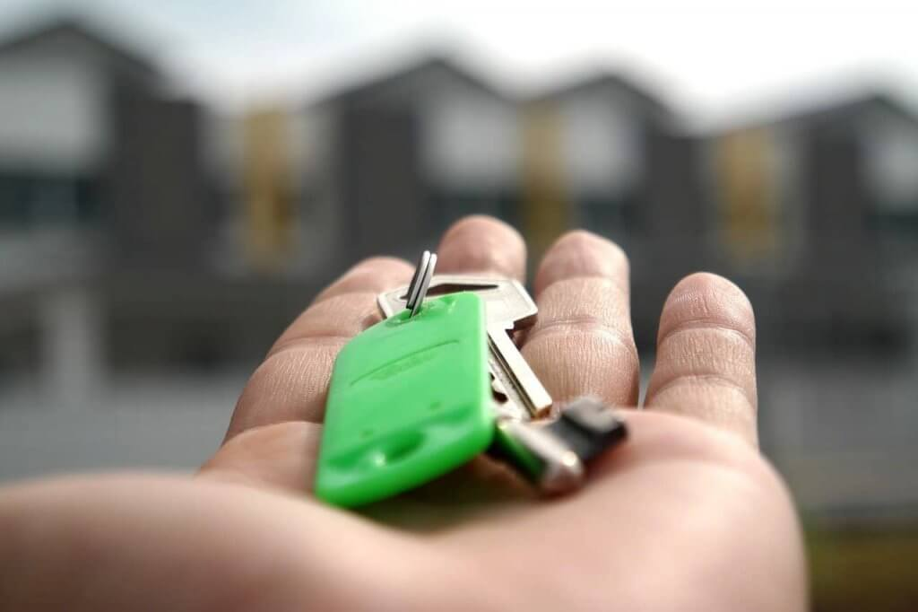 Pest Control For New Homes